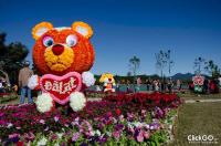 Lễ hội hoa Đà Lạt - Festival hoa Đà Lạt 2017