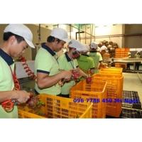 Rổ nhựa công nghiệp các loại Lhe 0967788450 Ngọc