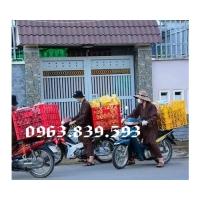 Sóng hở 8 bánh xe chở hàng sau xe máy./ 0963.839.593 Ms.Loan